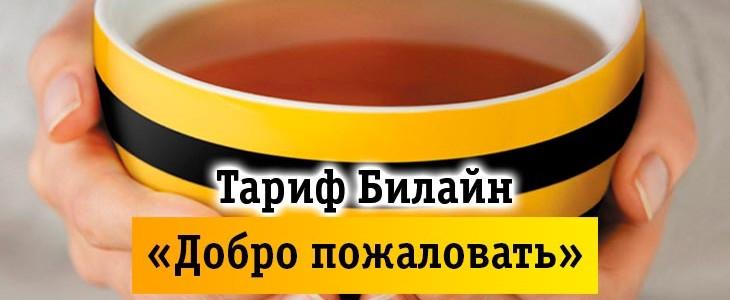 Тарифы билайн кемеровская область без абонентской платы